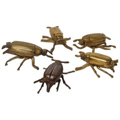 Five 1960s English Brass Beetle or Bug Trinket Dishes, Ashtray, Vide-Poche