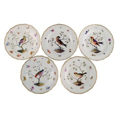 Five Antique Meissen Dinner Plates in Hand Painted Porcelain with Birds