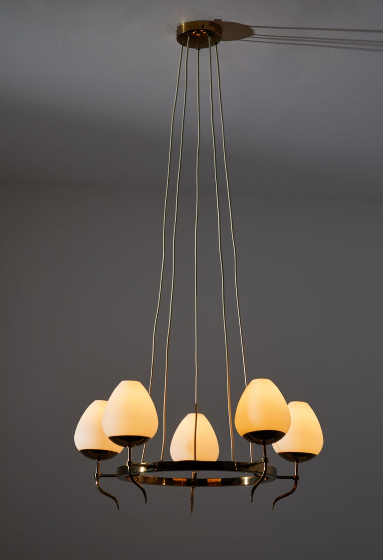 Five globe chandelier by Stilnovo. Manufactured in Italy circa 1950s. Brass with brush satin glass diffusers. Original canopy, custom ceiling plate. Rewired for US junction boxes. Takes five E27 25w maximum bulbs.