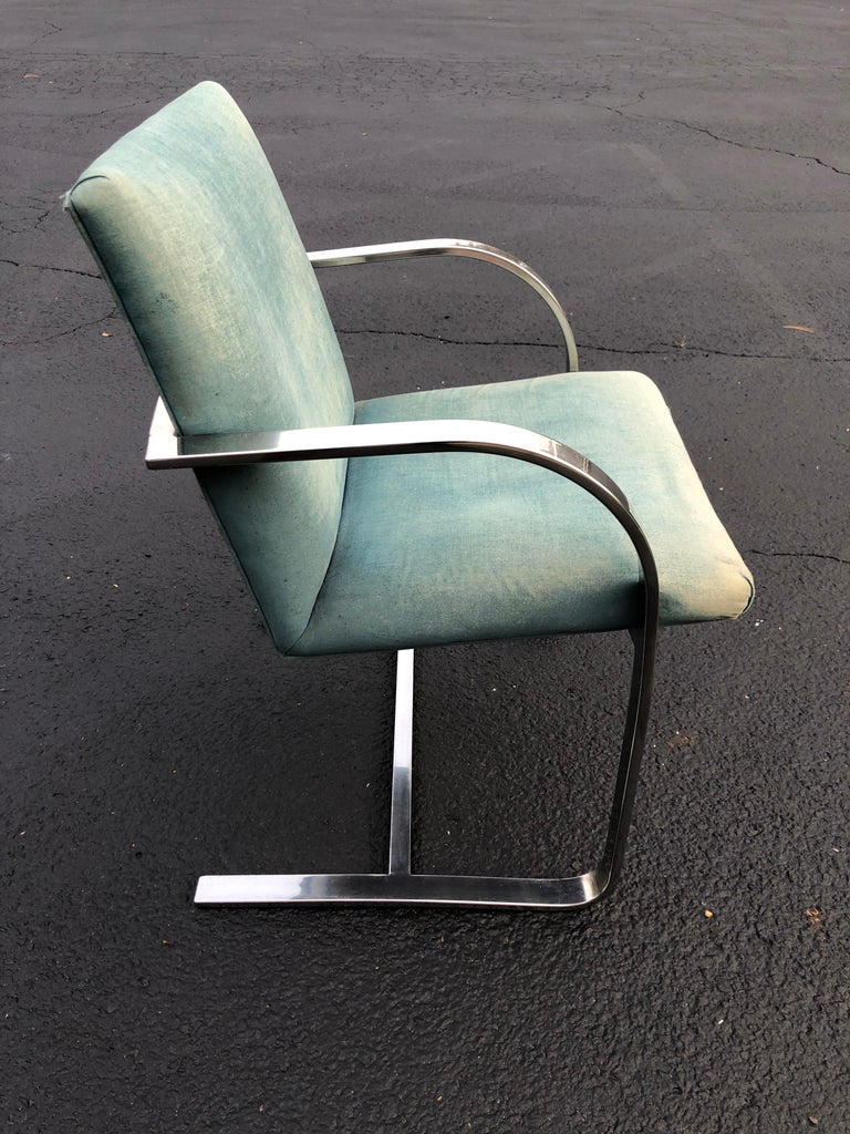 Flat bar Brno style chair .In the style of Ludwig Mies van der Rohe for Knoll. Light eggshell blue upholstery in need of recovering. Classic lines make up this beauty. Use for office or dining. Arm height is 24.50