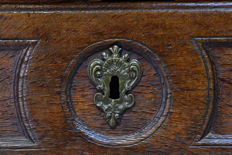 Flemish Baroque Chest of Drawers in Rich European Oak, circa 1770 For Sale 2