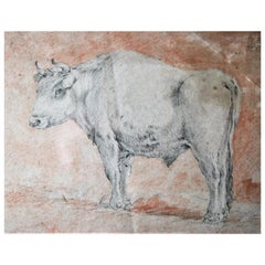 Flemish School, Circle of Paulus Potter Bull Drypoint and Red Chalk 17th Century