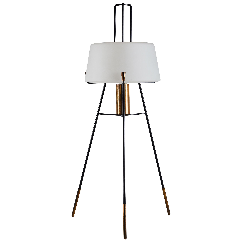 Floor Lamp by Stilnovo