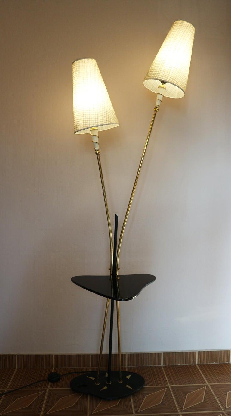 Floor Lamp, France, circa 1950 8