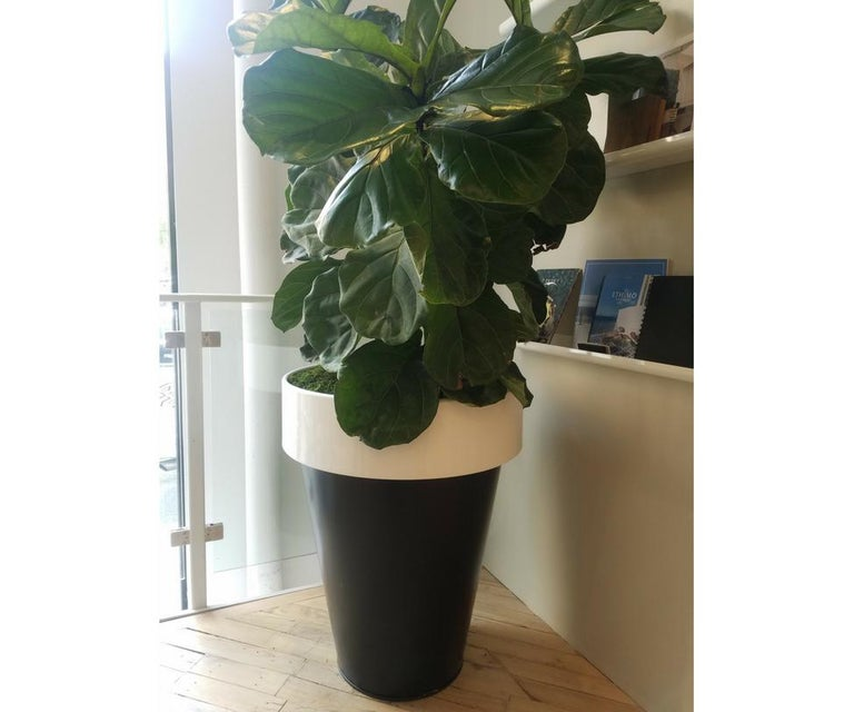 The everyday terracotta vase is transformed into an esteemed steel and metal creation enormous in size dominating space with a distinct personality.  Color: Black + White.  Matt Lacquered for Outdoor.  This product is currently on showroom