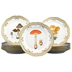 Flora Danica Fungi Dinner Plates by Royal Copenhagen