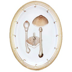 Flora Danica Fungi Oval Platter by Royal Copenhagen