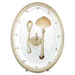 Flora Danica Parasol Mushroom Platter by Royal Copenhagen