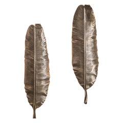 Flora Series, Bronze Banana Leaf Sconces, USA