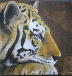 Tiger Profil