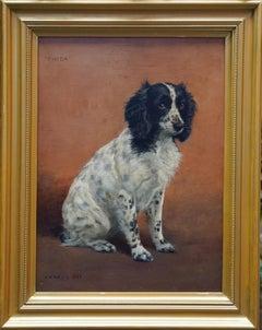 Portrait of Freda the Springer Spaniel - British animal oil painting dog art