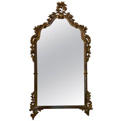 Florentine Rocaille Carved Giltwood Mirror
