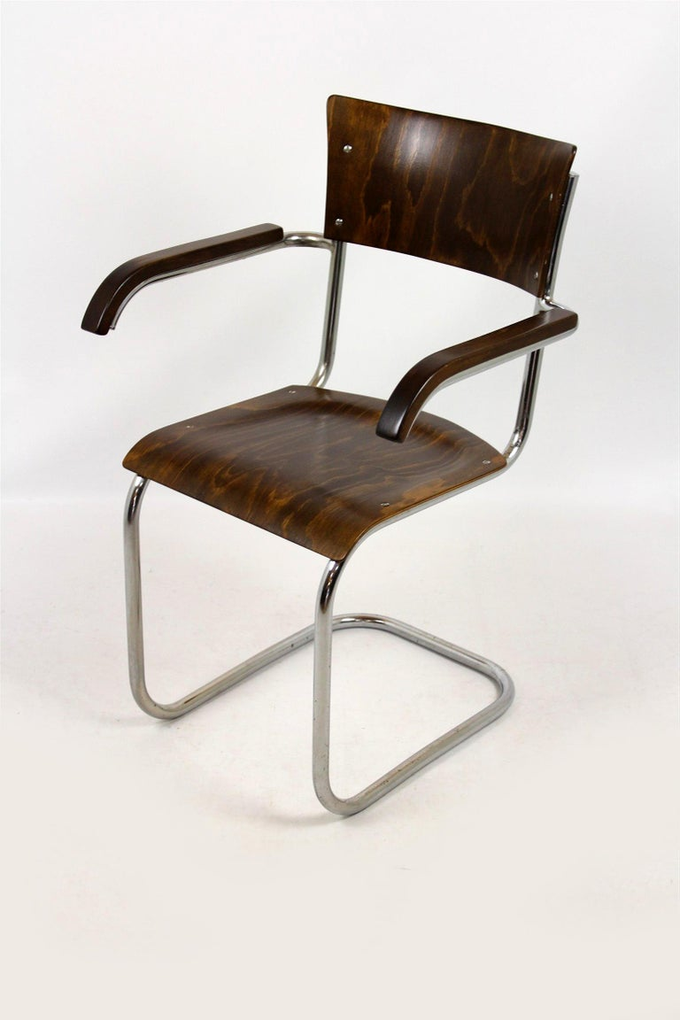 Fn 6 Cantilever Chair by Mart Stam for Mücke-Melder, 1930s For Sale 4