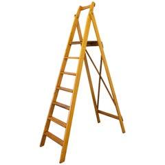 Folding Library Steps or Workshop Ladder Beech, 1950