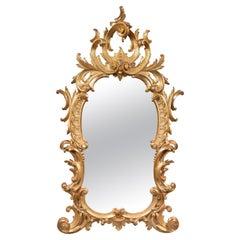 Foliate, 19th Century, Giltwood Mirror