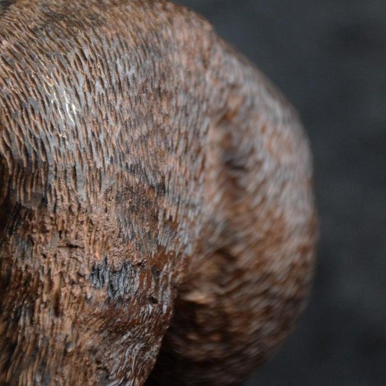 Folk Art Carved Androcles Lion Figure For Sale 4