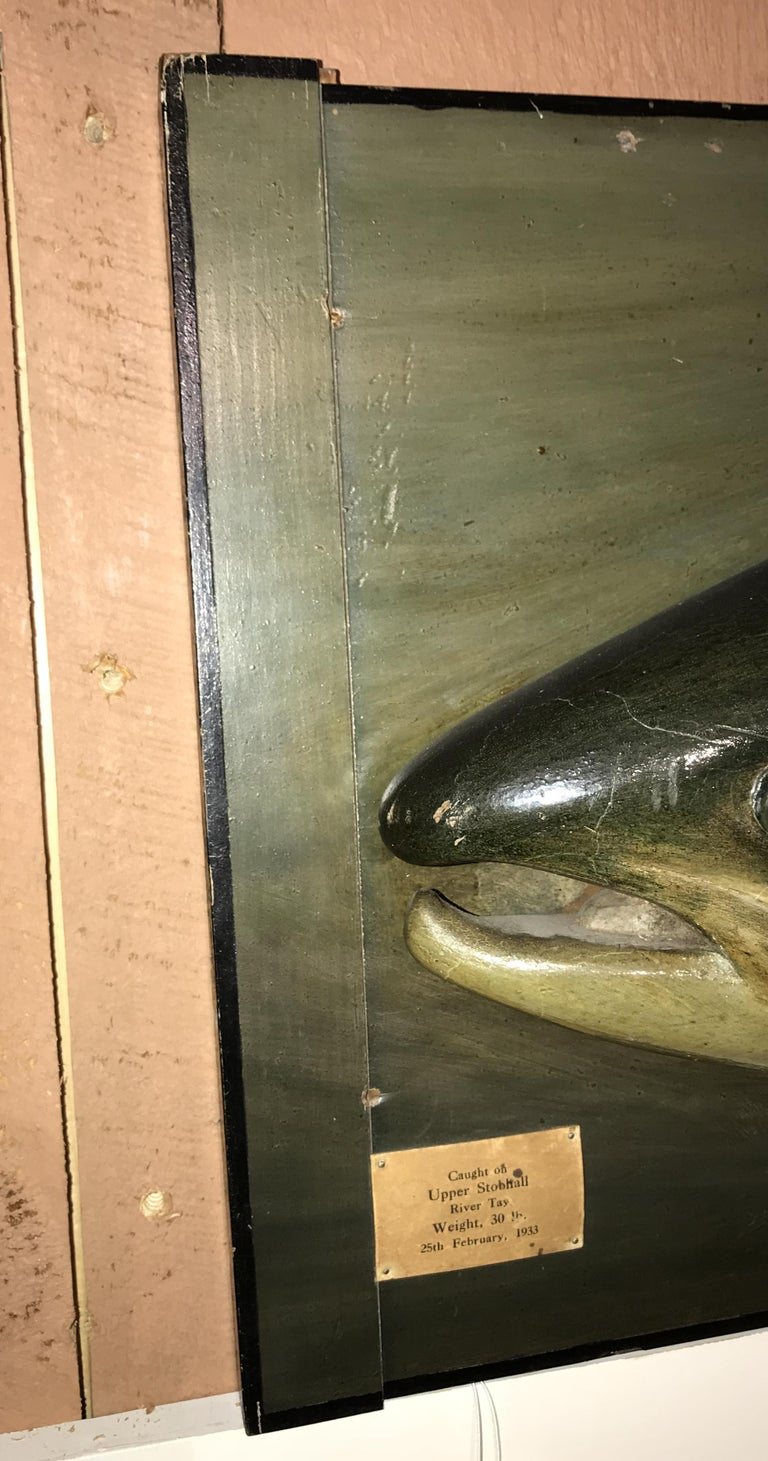 Folk Art Carved Wooden Atlantic Salmon Model, Firm of PD Malloch, Perth Scotland For Sale 3