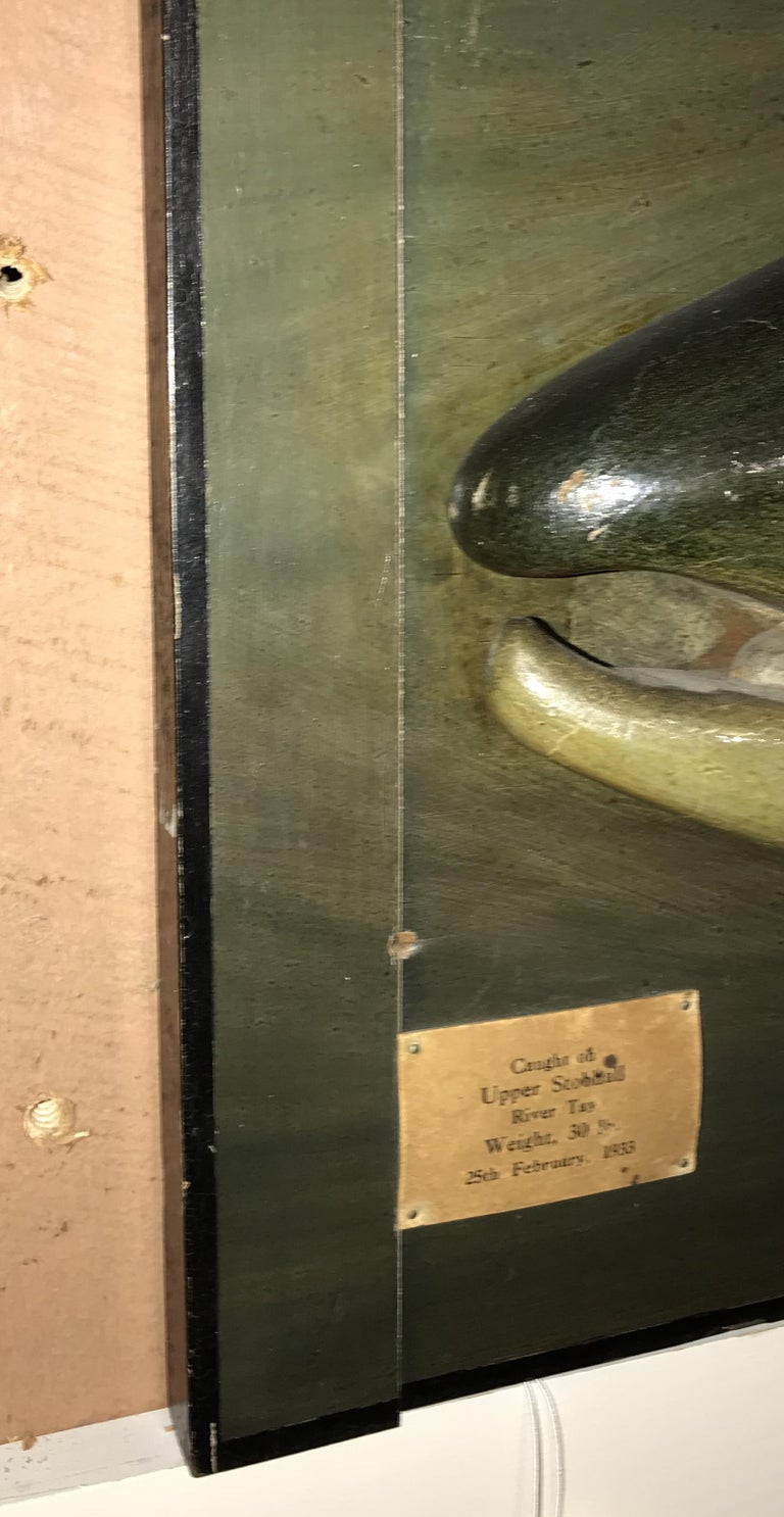Folk Art Carved Wooden Atlantic Salmon Model, Firm of PD Malloch, Perth Scotland For Sale 4