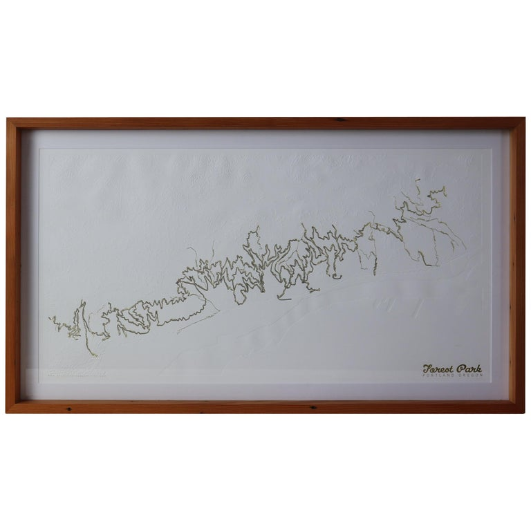 Forest Park Letter Pressed Map with Embossed Trails in Salvaged Fir Frame For Sale