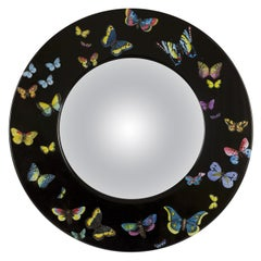Fornasetti Frame with Convex Mirror Farfalle Butterflies Color on Black