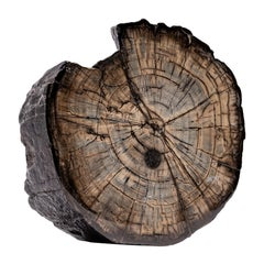 Organic Modern Decorative Objects