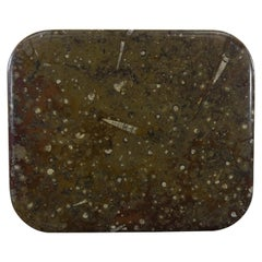 Fossil Stone Marble Table Top with Loads of Ammonities and Squids Inlays