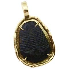 Fossil Trilobite 18 Karat Yellow Gold Pendant