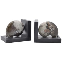 Fossiline Bookends Sculpture #4 by Nino Basso