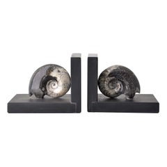 Fossiline Set of Black Bookends by Nino Basso
