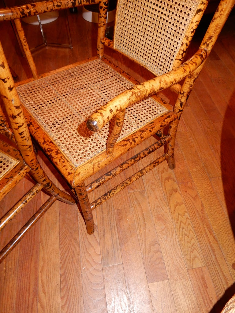 20th Century Four Bamboo and Cane Dining Chairs, 1920s For Sale