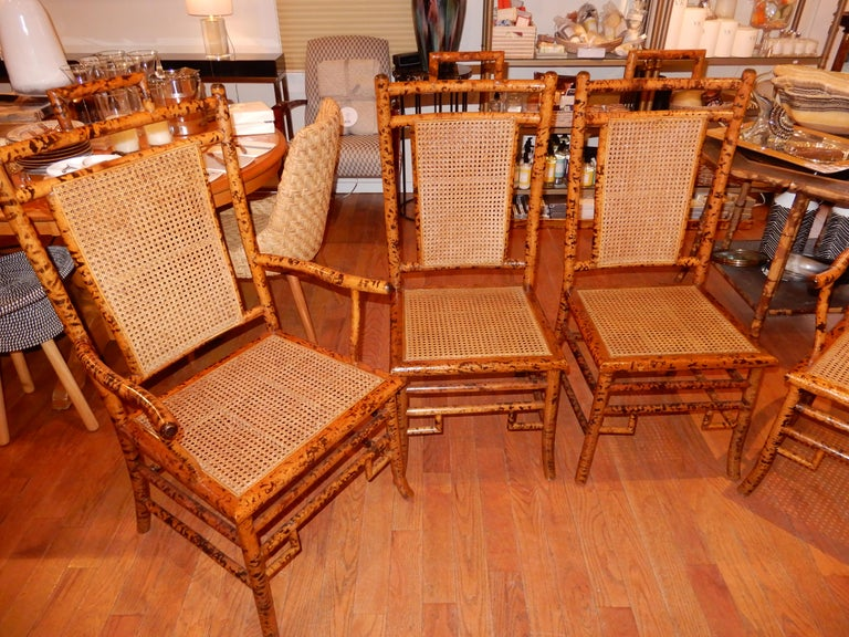 Four Bamboo and Cane Dining Chairs, 1920s For Sale 1