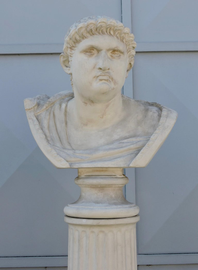 Four Grand Tour Style Romans Emperors Busts on Columns, 19th Century For Sale 4