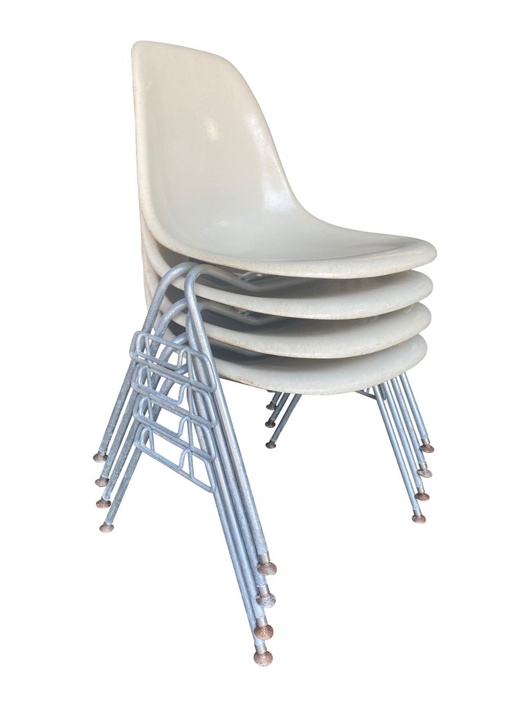 Classic set of iconic Eames shell chairs by Herman Miller. Parchment color shells atop zinc plated steel stacking bases. All chairs with glides. Signed and guaranteed authentic vintage Herman Miller production.