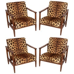 Four Leopard Velvet Armchairs, Hollywood Regency, Edmund Homa, 1960s, Poland