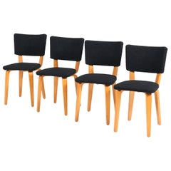 Four Mid-Century Modern Birch Chairs by Cor Alons for Gouda Den Boer, 1950s