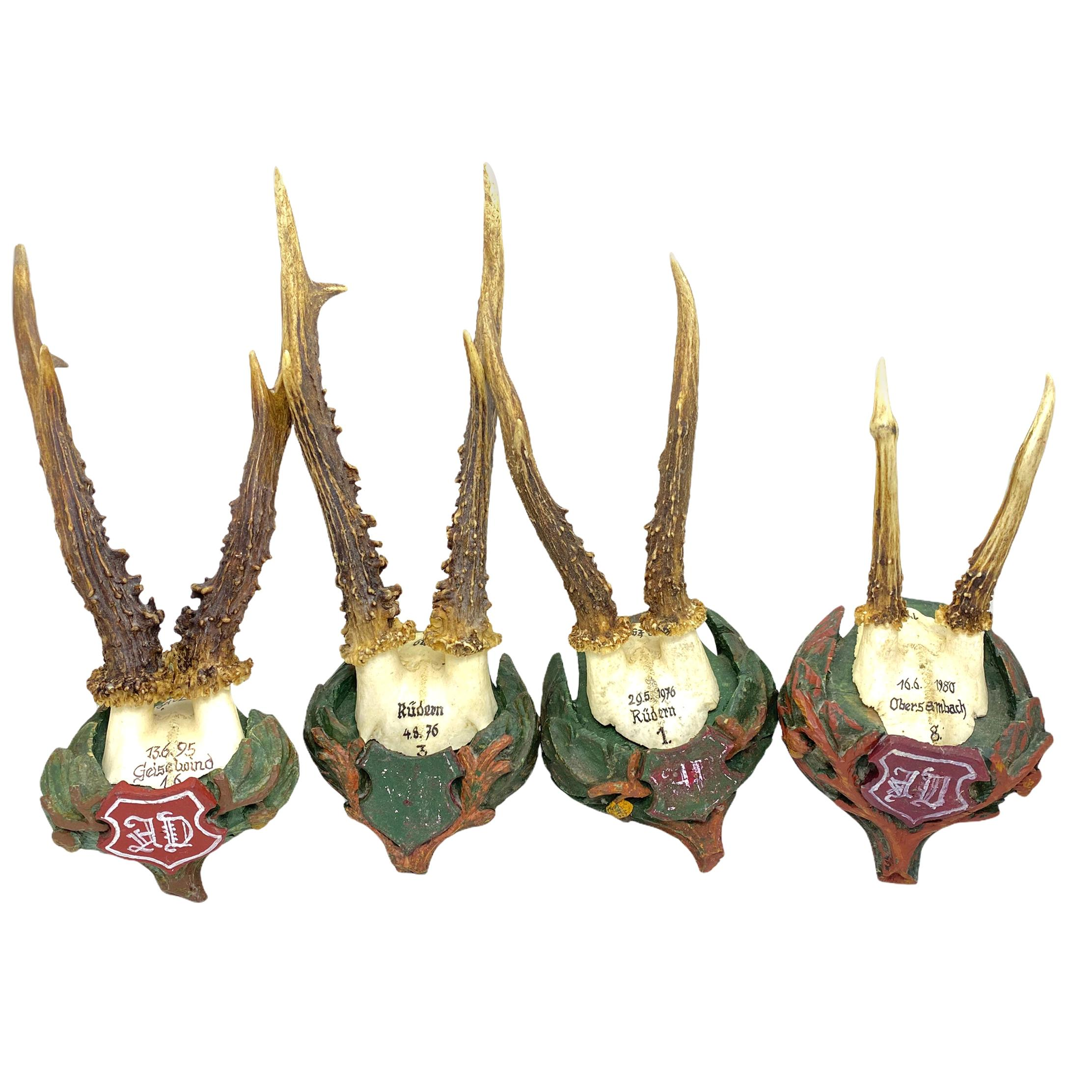 Four Vintage Black Forest Deer Antler Trophies, Wood Carved Plaque, Austria
