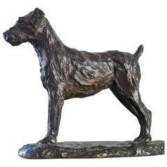 Fox Terrier 'dog', Malcolm James Mac Kenzie
