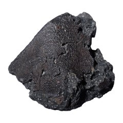 Fragment of the Famous Murchison Meteorite