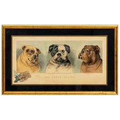 Framed Artwork by L. Darcy