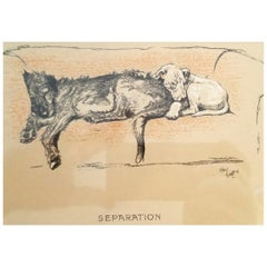 Framed Dog Prints by Cecil Aldin
