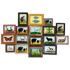 Framed Glass Paintings of Animals, 20th Century