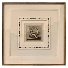 "The Letter ""Q"" an Engraving by L. Vanvitelli,  1771"