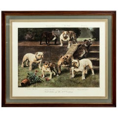 Framed Print by Artist Arthur Wadle