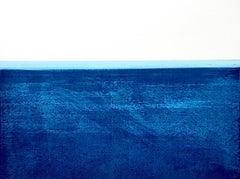 Surfline 5