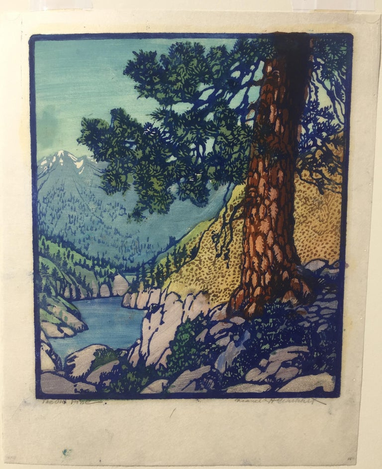 The Old Pine - Print by Frances H. Gearhart
