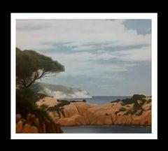 """ LANDSCAPE  COAST"" original acrylic canvas painting"