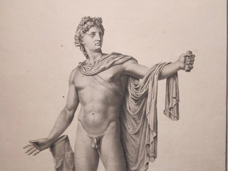 Apollo Belvedere and Venus Callipyge - Academic Print by Francesco Piranesi