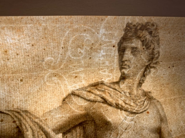 Apollo Belvedere and Venus Callipyge For Sale 1