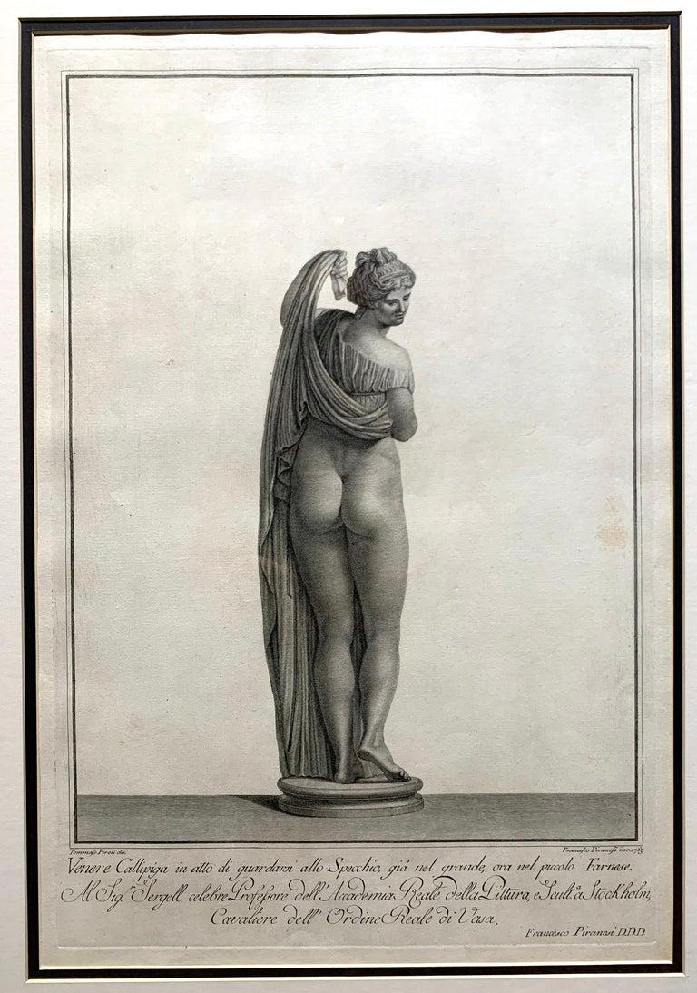 Apollo Belvedere and Venus Callipyge For Sale 3