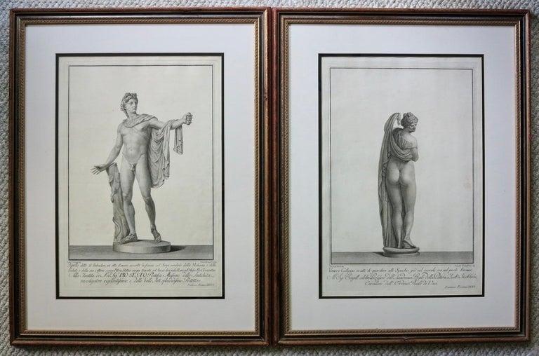 Francesco Piranesi Figurative Print - Apollo Belvedere and Venus Callipyge